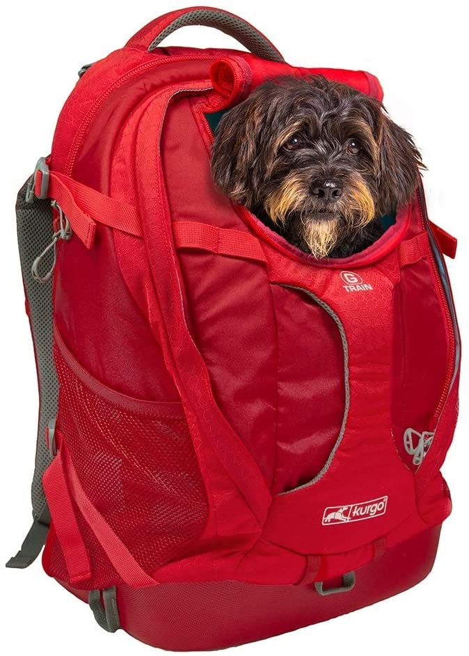 Best Dog Carrier Backpacks: Kurgo Dog Carrier - Best Carrier for Dogs 25 lbs or Less