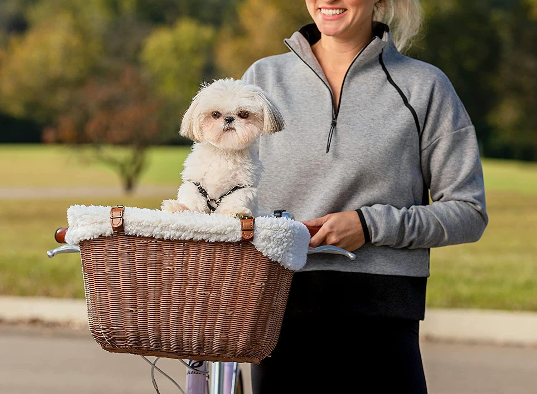 The 8 Best Dog Bike Baskets
